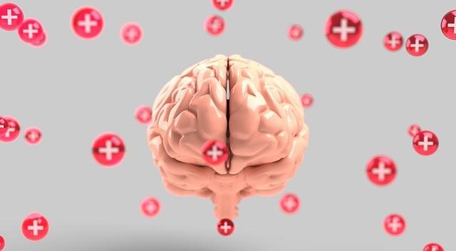 Comment la TCC agit sur le cerveau ?