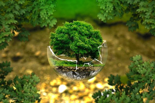 L'éco-anxiété, de plus en plus de personnes se font du souci pour la planète